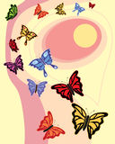 Colorful butterflies. An abstract illustration of colorful butterflies flying around a sunset sky vector illustration