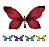 Colorful butterflies. Several butterflies in variety of bright colors on a white background Royalty Free Stock Image