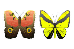 Colorful butterflies with abstract decorative pattern summer free fly present silhouette and beauty nature spring insect Stock Images