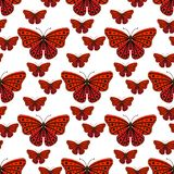 Colorful butterflies with abstract decorative seamless pattern background fly present silhouette and beauty nature Royalty Free Stock Photo