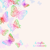 Colorful Butterflies Background Stock Photography