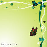 Colorful butterflies and flowers Royalty Free Stock Photos