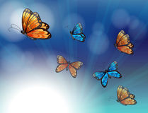 Colorful butterflies in a gradient colored stationery Stock Photography