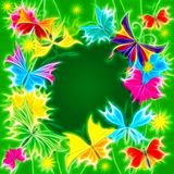 Colorful butterflies on green background blank center Stock Image