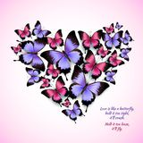 Colorful butterflies heart shape pattern Stock Photography