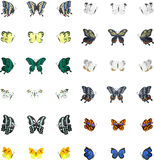 Colorful butterflies. 36 Icons of colorful butterfly Stock Photo