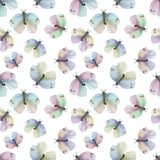 Colorful butterflies pattern vector illustration