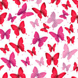 Colorful Butterflies Seamless Pattern Stock Photography