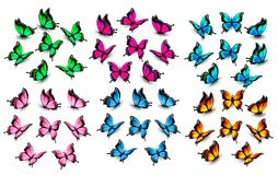Colorful butterflies set. Vector. stock illustration