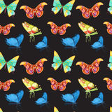 Colorful Butterflies Set Stock Photos