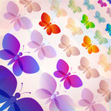 Colorful butterflies summer pattern Royalty Free Stock Photography