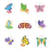Colorful butterflies vector. Royalty Free Stock Photo
