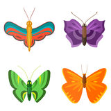 Colorful butterflies vector. Stock Photography