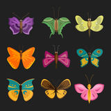 Colorful butterflies vector. Royalty Free Stock Images