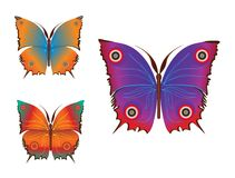 Colorful  butterflies (vector) Royalty Free Stock Images
