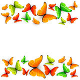 Colorful butterflies on white background Stock Photography