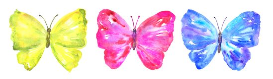 Colorful butterflies: yellow, pink, blue. Hand drawn watercolor illustration. Isolated on white background. vector illustration
