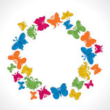 Colorful butterfly. Arrange in ring shape Royalty Free Stock Photos