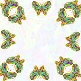 Colorful butterfly as background  with text copy space Stock Images
