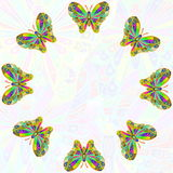 Colorful butterfly as background  with text copy space Royalty Free Stock Photography