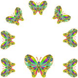 Colorful butterfly as background  with text copy space Stock Image
