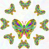 Colorful butterfly as background  with text copy space Royalty Free Stock Images