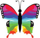 Colorful butterfly. Beautiful colorful butterfly,  illustration isolated on white Stock Photos
