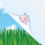 Colorful butterfly and green grass and blue sky. Colorful butterfly on a background of green grass and blue sky and space for your text Stock Photo