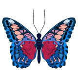 Colorful butterfly Royalty Free Stock Photo