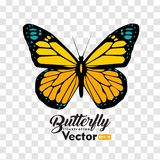 Colorful Butterfly illustration vector collection royalty free illustration