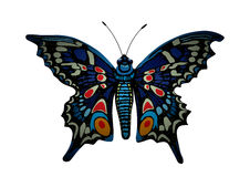 Colorful butterfly. Stock Images