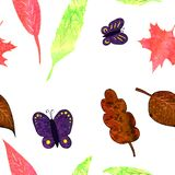 Colorful butterfly and leaves seamless pattern . Watercolor, hand painted, isolated on white background
