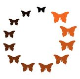 Colorful Butterfly mixed orange black in circle Royalty Free Stock Images
