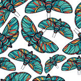 Colorful butterfly seamless vector background Stock Photo