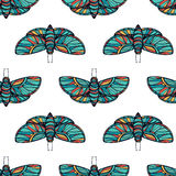 Colorful butterfly seamless vector background Stock Photography