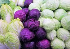 Colorful cabbages Stock Photos