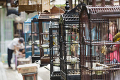 Colorful cages for sale at the bird market in Yogyakarta, Java, Royalty Free Stock Images