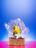 Colorful cake in cellophane wrap Royalty Free Stock Photography
