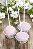 Colorful cake pops, birthday party. Stock Images