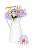 Colorful camomile flowers in jug Stock Photos