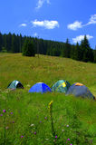 Colorful camping tents on mountain meadow Stock Images