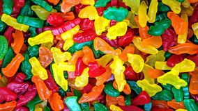 Colorful candies in loose animal shapes vector illustration