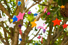 Colorful candle stars on tree Stock Photos