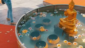Colorful Candles in Lotus Shape Floating on Water in a Buddhist Temple. Pattaya. Thailand. Bowl of water in the temple, a big golden Buddha. Coins under water stock video footage