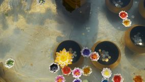 Colorful Candles in Lotus Shape Floating on Water in a Buddhist Temple. Thailand. Colorful candles in lotus shape floating on water in a Buddhist temple stock footage