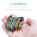 Colorful carabiner climbing in hand Stock Image