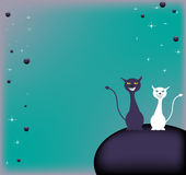 Colorful card with two cats. Abstract colorful background with small bubbles and two cats smiling standing on a sphere Royalty Free Stock Photo