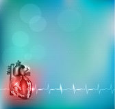 Colorful Cardiology background Stock Images