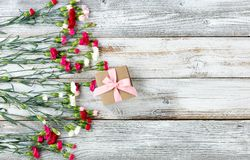 Colorful carnation flowers and gift forming left border on white Stock Photo