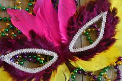 Feathered Mardi Gras mask with beads. Colorful carnival mask on wood background royalty free stock photography